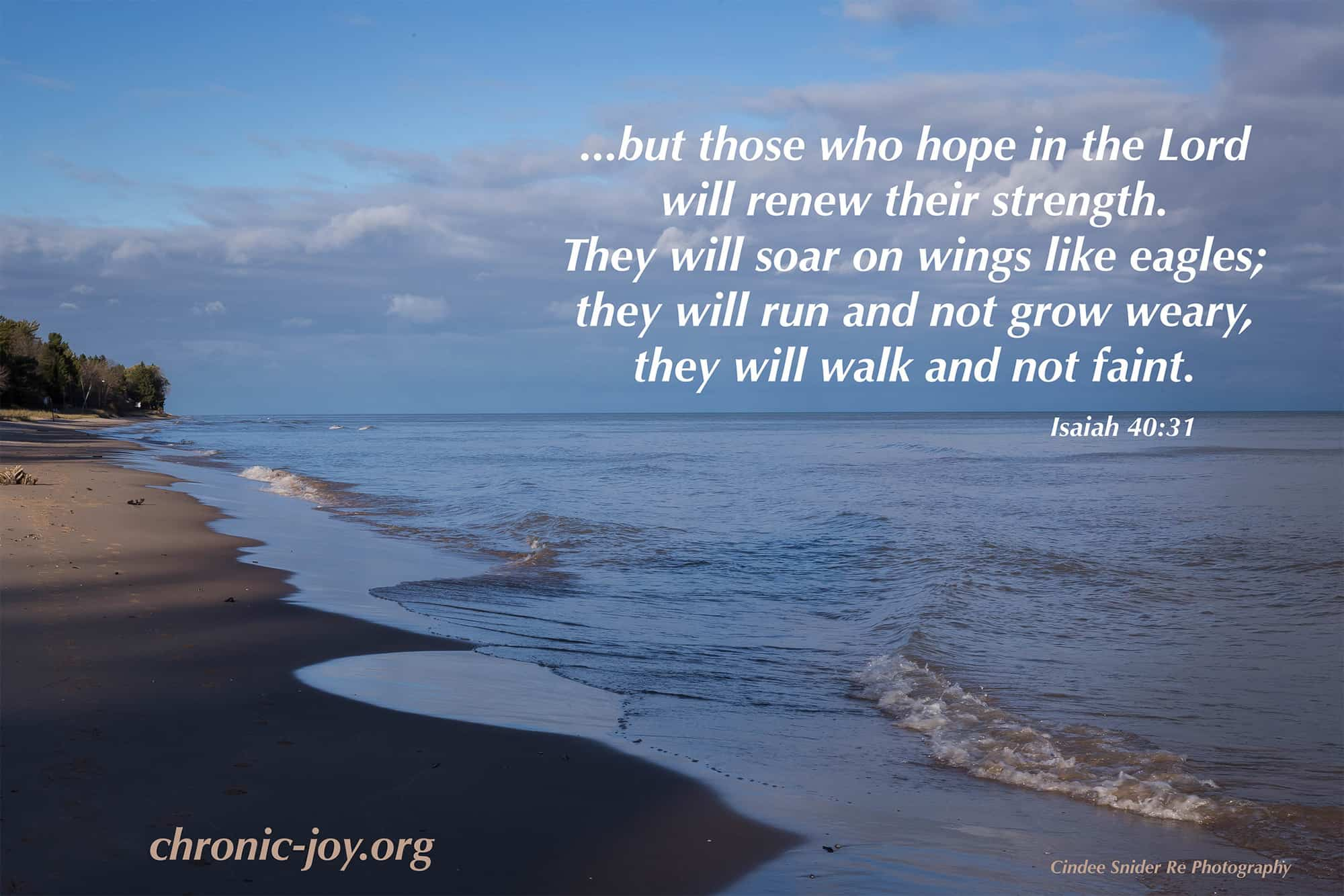...but those who hope in the Lord...