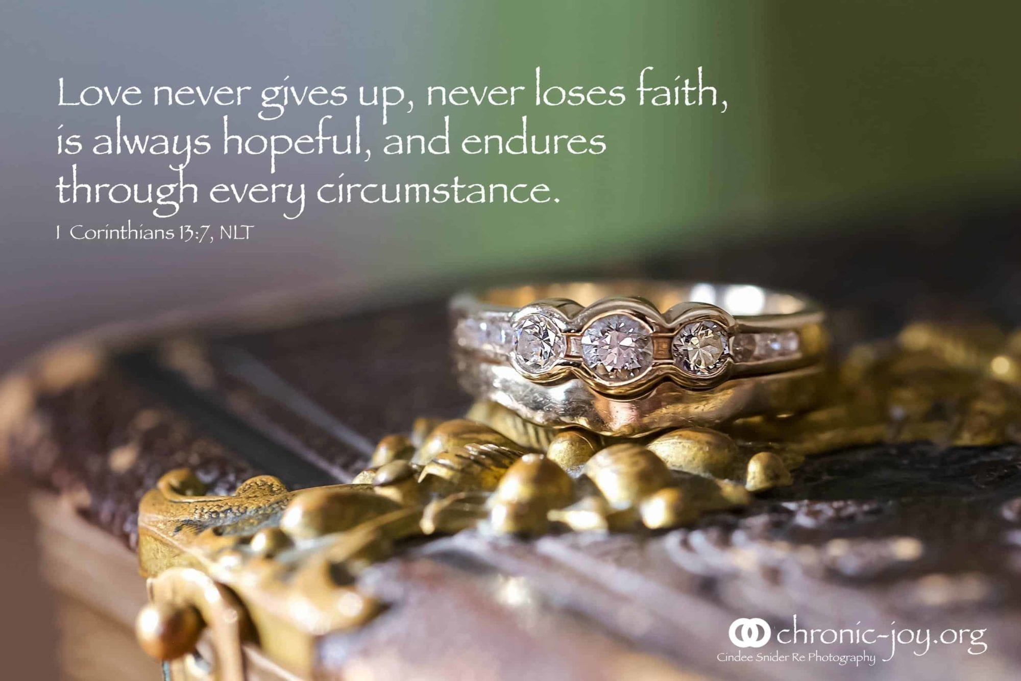 Love never gives up, never loses faith, is always hopeful, and endures through every circumstance. 1 Corinthians 13:7 NLT