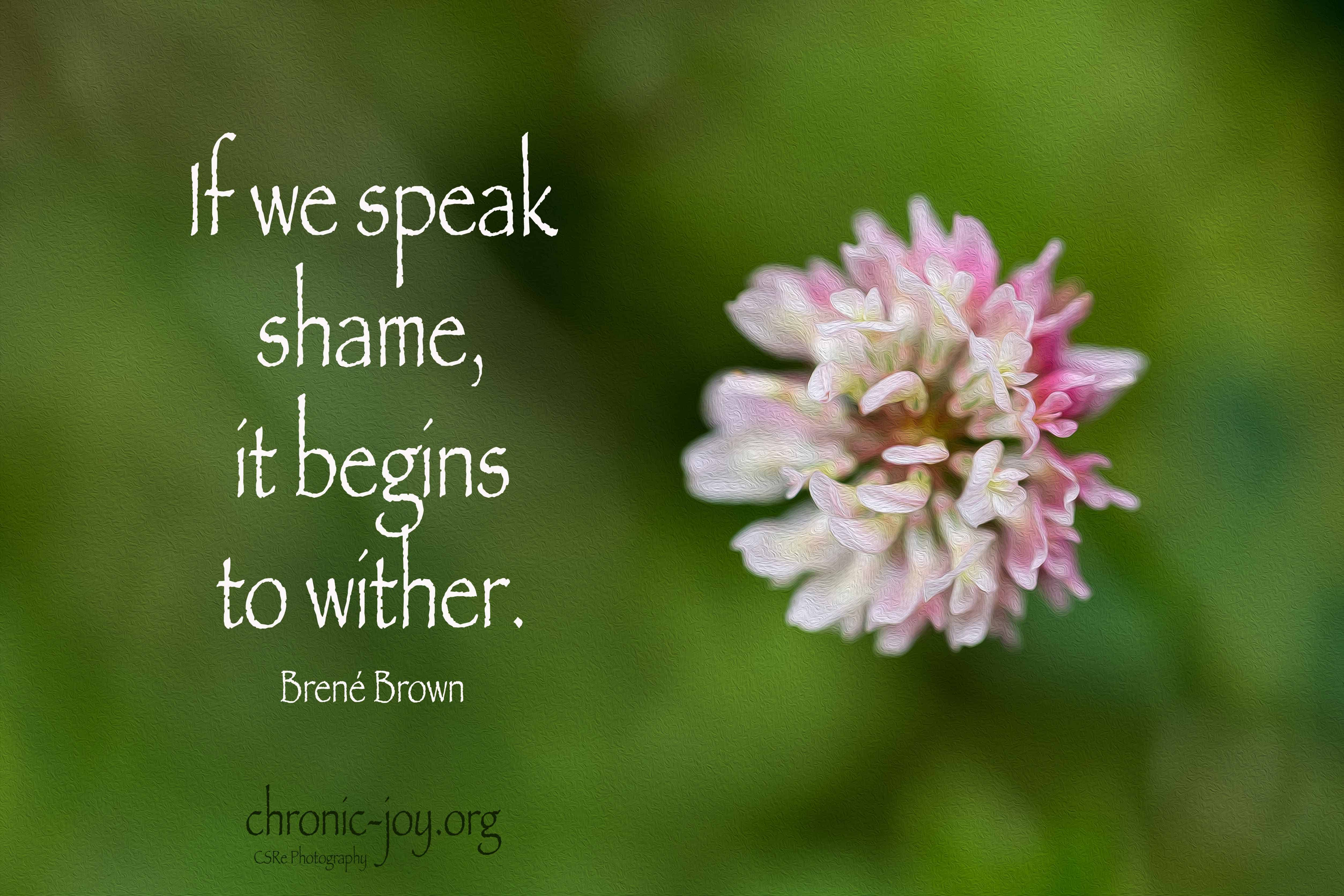 If we speak shame, it begins to wither. ~ Brené Brown