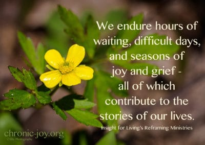 Joy and grief contribute to our stories.