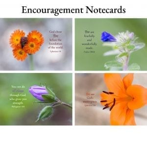 Encouragement Notecards
