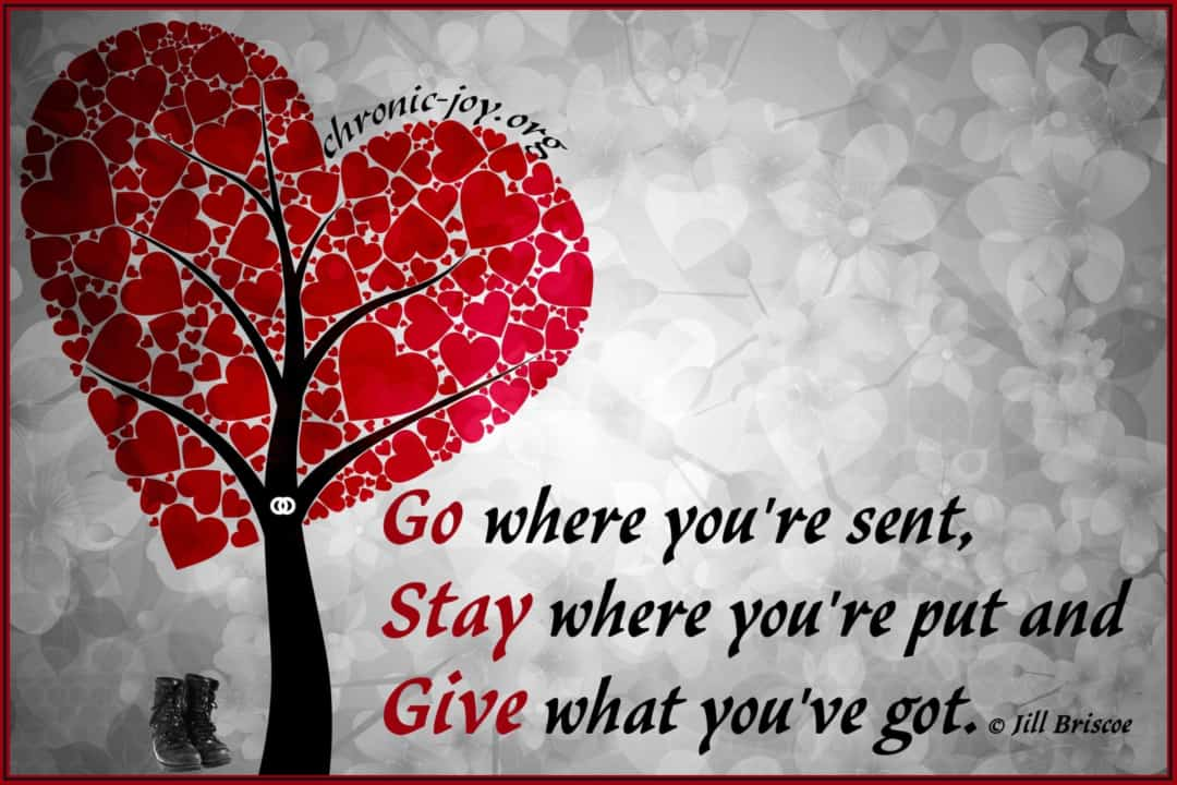 Go, Stay and Give