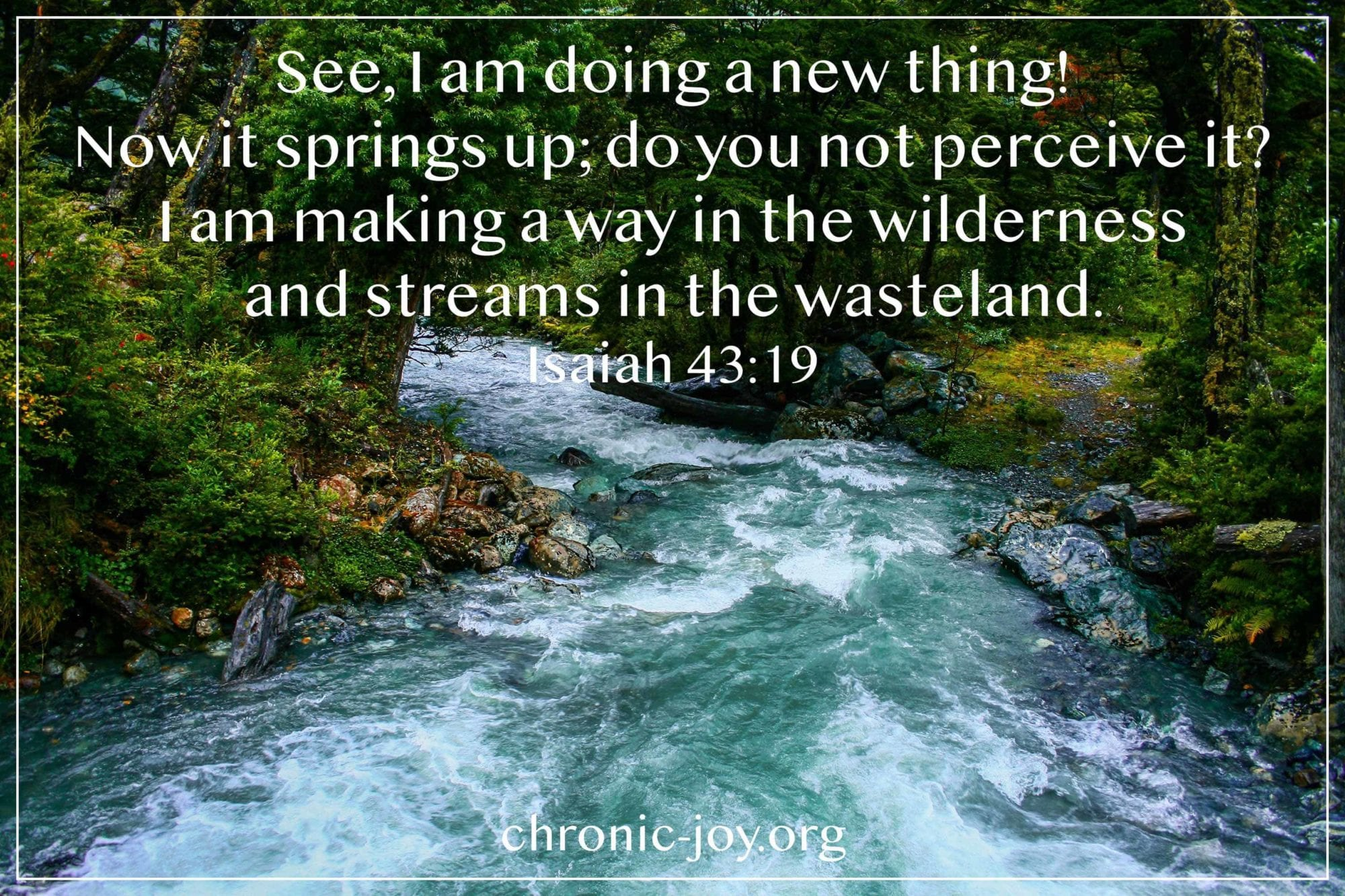 See, I am doing a new thing! Now it springs up, do you not perceive it? I am making a way in the wilderness and streams in the wasteland. (Isaiah 43:19)