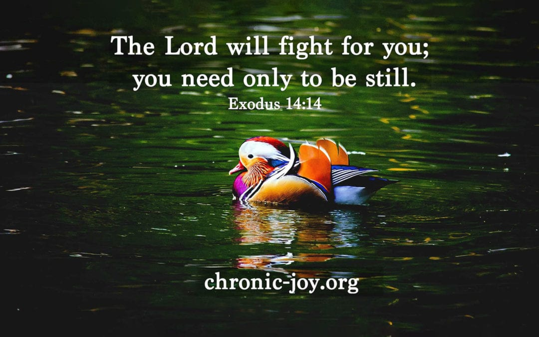 The Lord Will Fight for You • Devotional