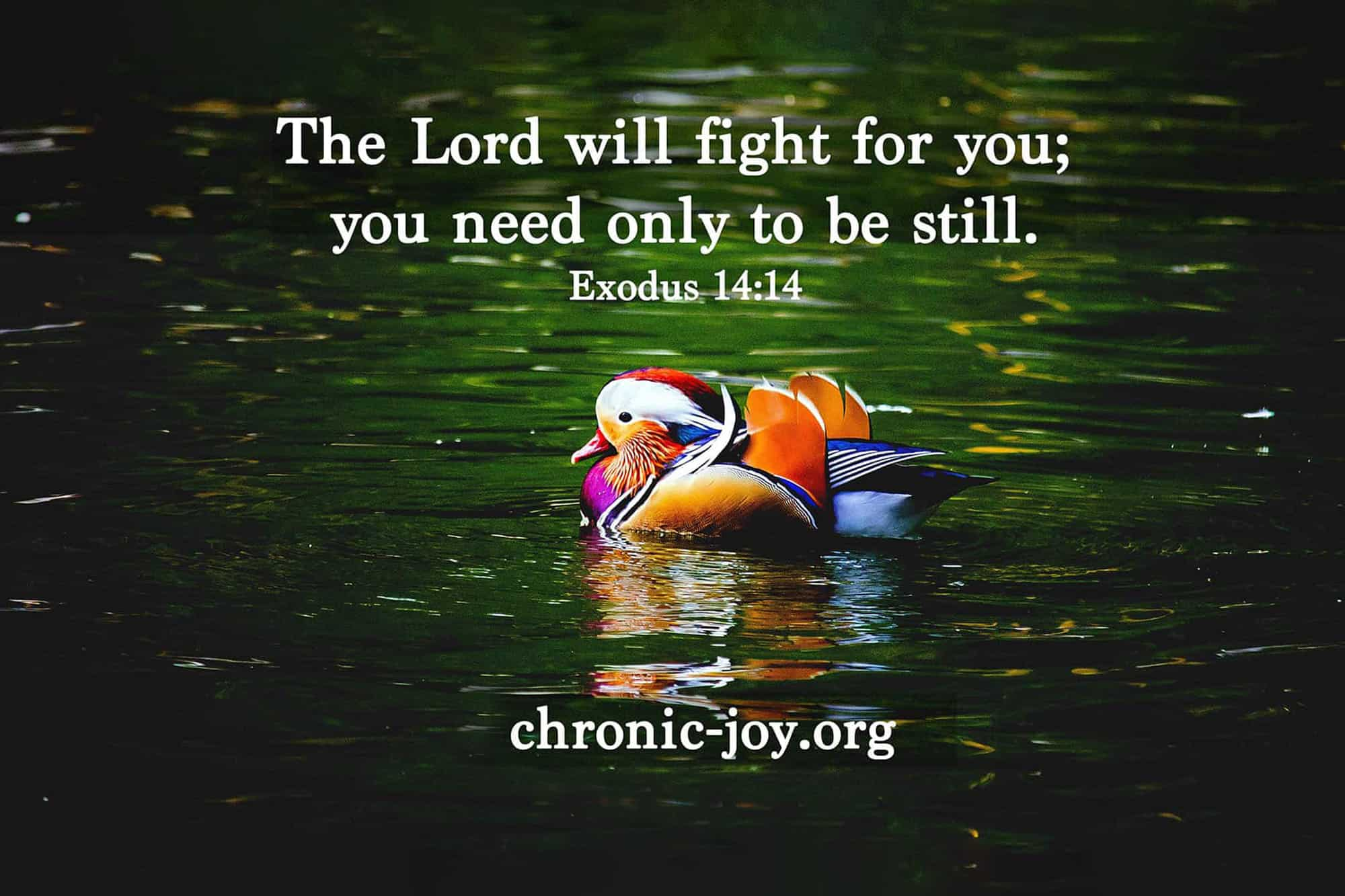 The Lord Will Fight for You • Prayer Prompt