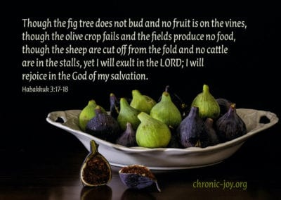 The fig tree does not bud...