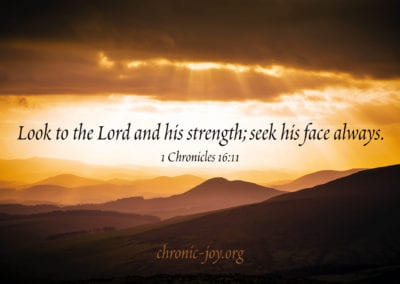 Look to the Lord and his strength
