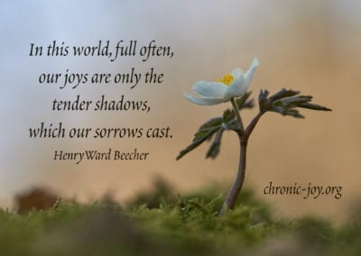 ...our joy are only the tender shadows, which our sorrows cast.