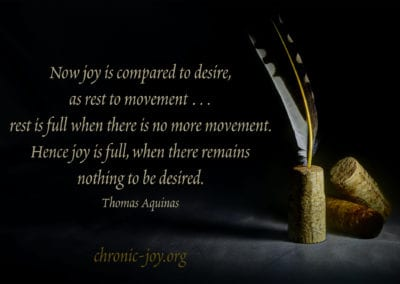 """""""Now joy is compared to desire, as rest to movement … and rest is full when there is no more movement. Hence joy is full, when there remains nothing to be desired."""" Thomas Aquinas"""