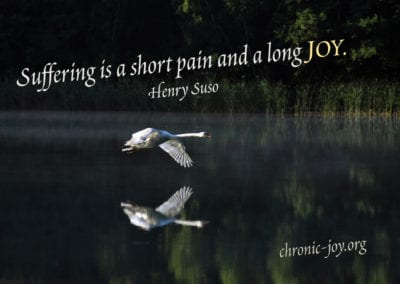 """""""Suffering is a short pain and a long joy."""" Henry Suso"""
