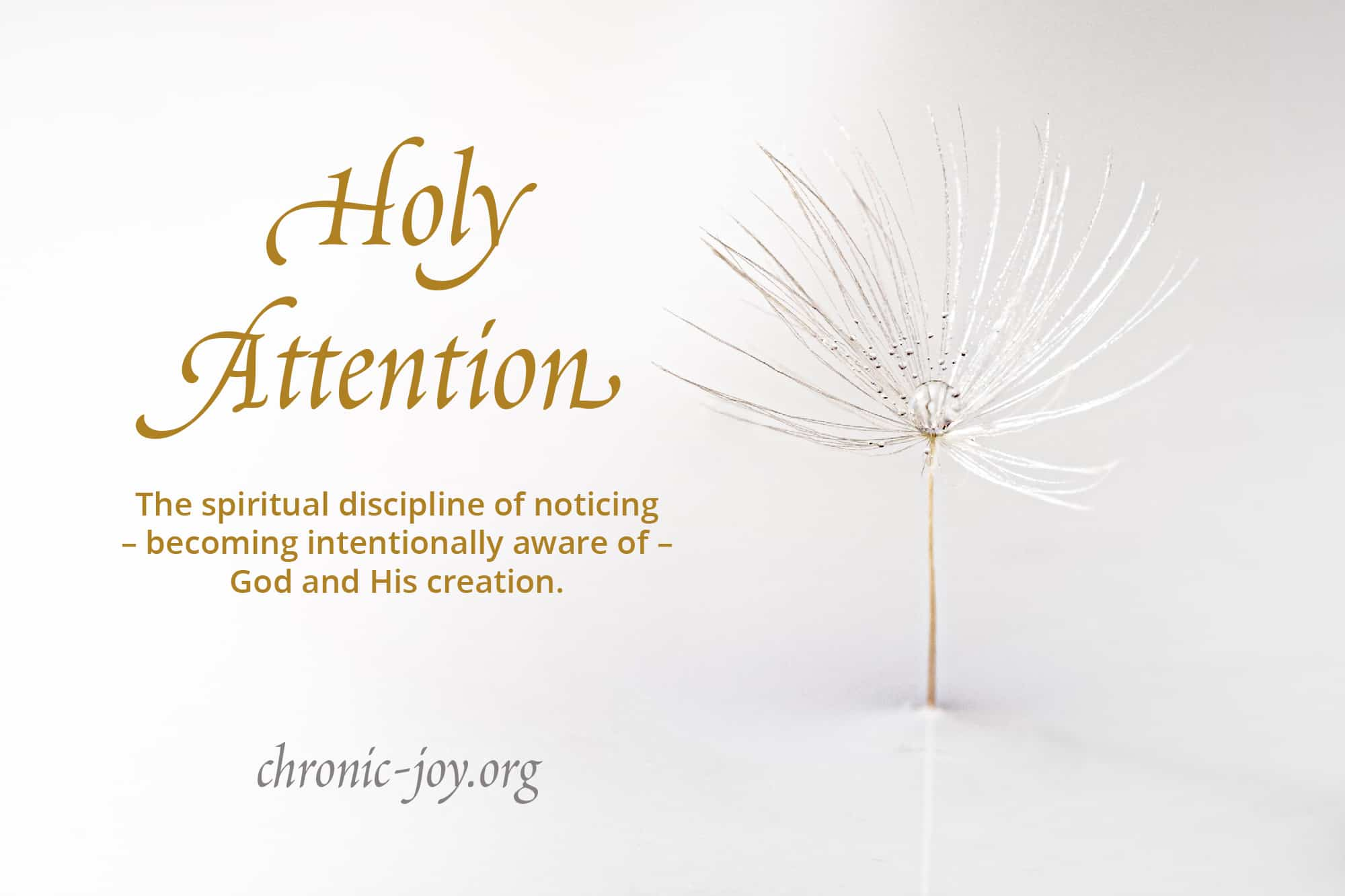 Holy Attention •The spiritual discipline of noticing - becoming intentionally aware - of God and His creation.