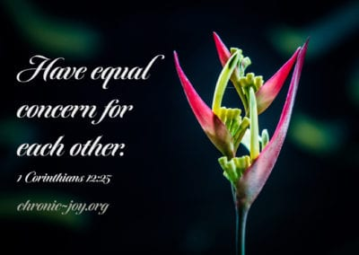 Have equal concern for each other.