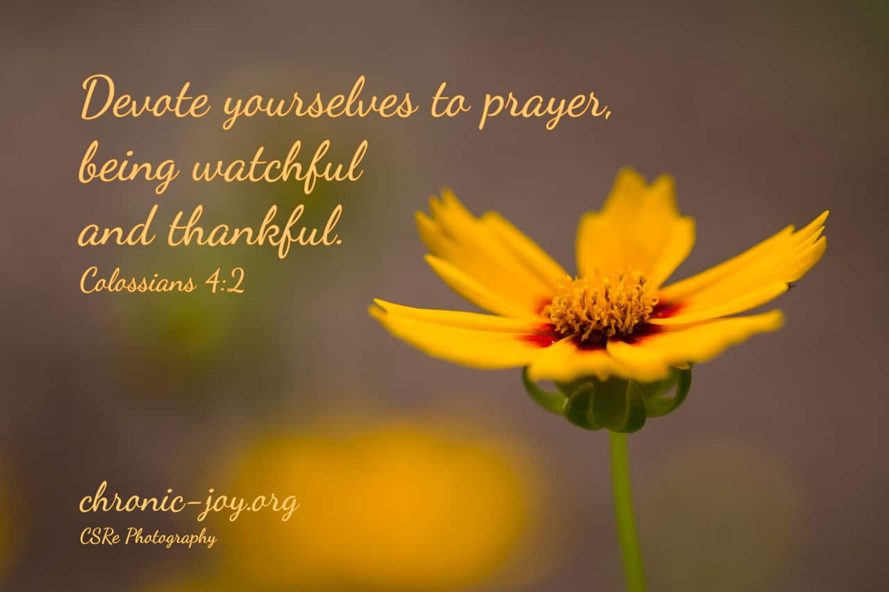 Devote yourselves to prayer