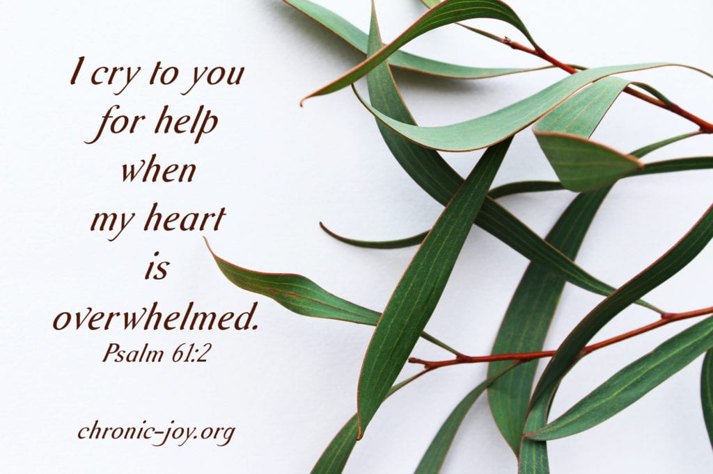 """""""I cry to you for help when my heart is overwhelmed."""" Psalm 61:2"""