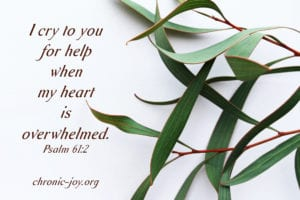 """I cry to you for help when my heart is overwhelmed."" Psalm 61:2"