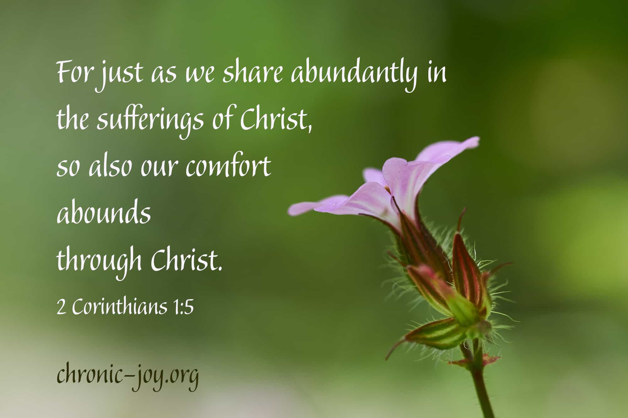 Sharing the Comfort of Christ • Devotional