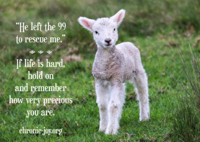 "He left the 99 to rescue me."" If life is hard, hold on and remember how very precious you are."