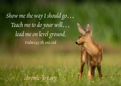 Show me the way I should go... Teach me to do your will... lead me on level ground. (Psalm 143:8, 10)