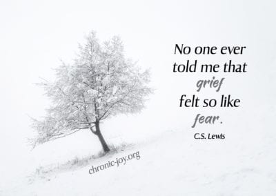 """""""No one ever told me that grief felt so like fear."""" C.S. Lewis"""