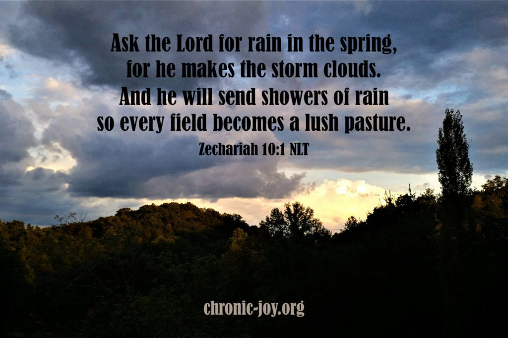 """Ask the Lord for rain in the spring, for he makes the storm clouds. And he will send showers of rain so every field becomes a lush pasture."" Zechariah 10:1 NLT"