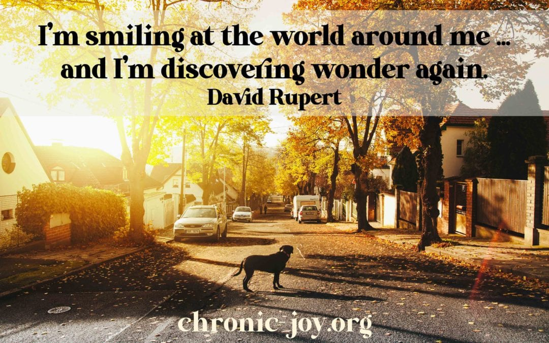 Discovering Wonder Anew As I Wander