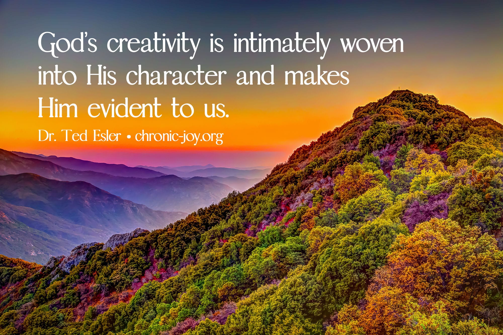 """""""God's creativity is intimately woven into His character and makes Him evident to us."""" Dr. Ted Esler"""