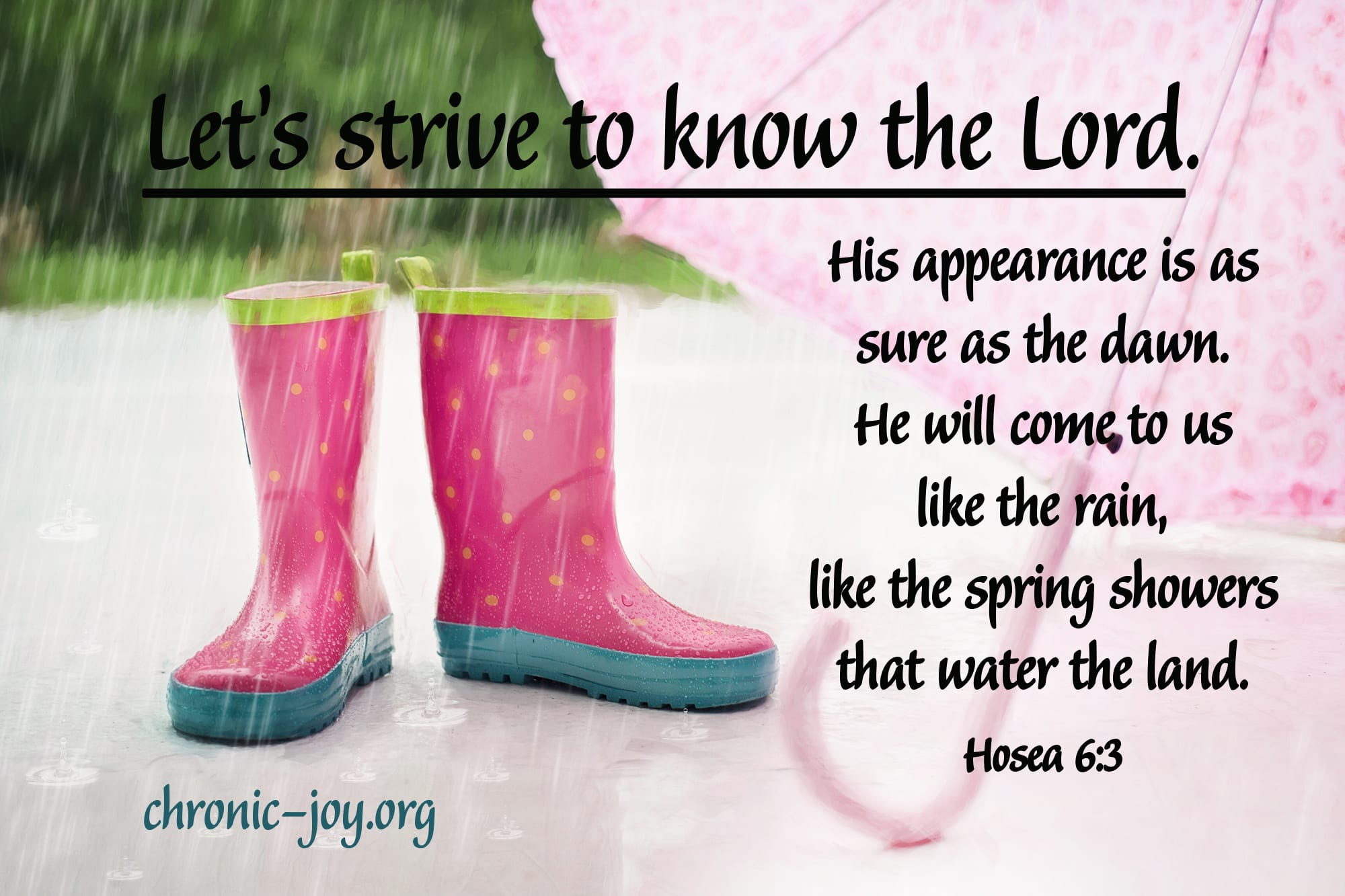 """Let's strive to know the Lord. His appearance is as sure as the dawn. He will come to us like the rain, like the spring showers that water the land."" Hosea 6:3"
