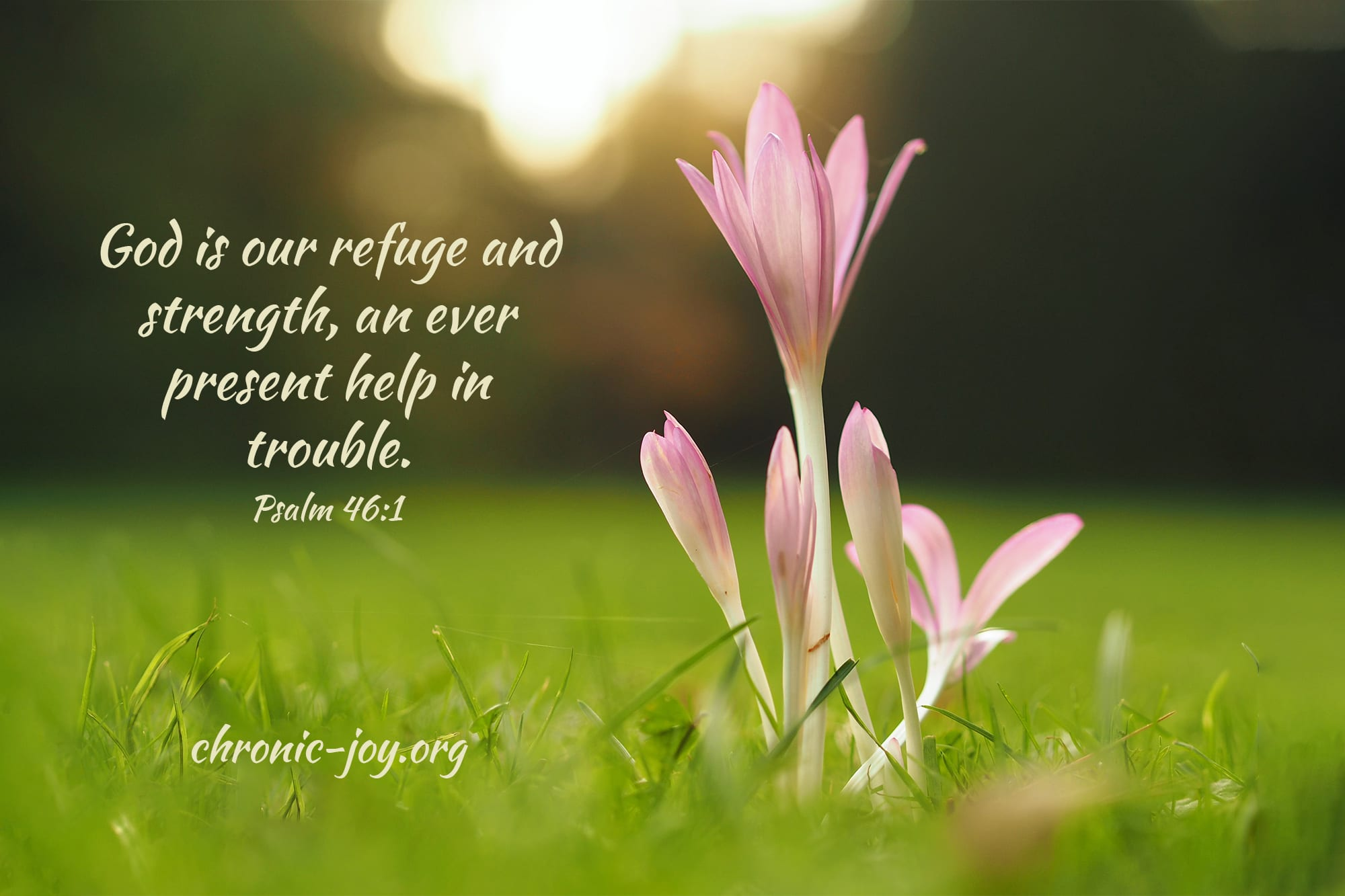 God is our refuge and strength, an ever present help in trouble.  Psalm 46:1