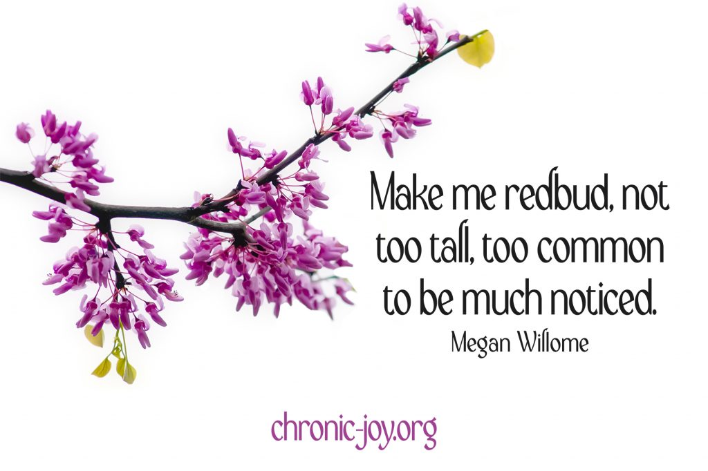 """""""Make me redbud, not too tall, too common to be much noticed."""" Megan Willome"""
