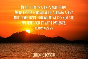 """""""Hope that is seen is not hope. Who hopes for what he already sees? But if we hope for what we do not see, we wait for it with patience."""" Romans 8:24-25"""